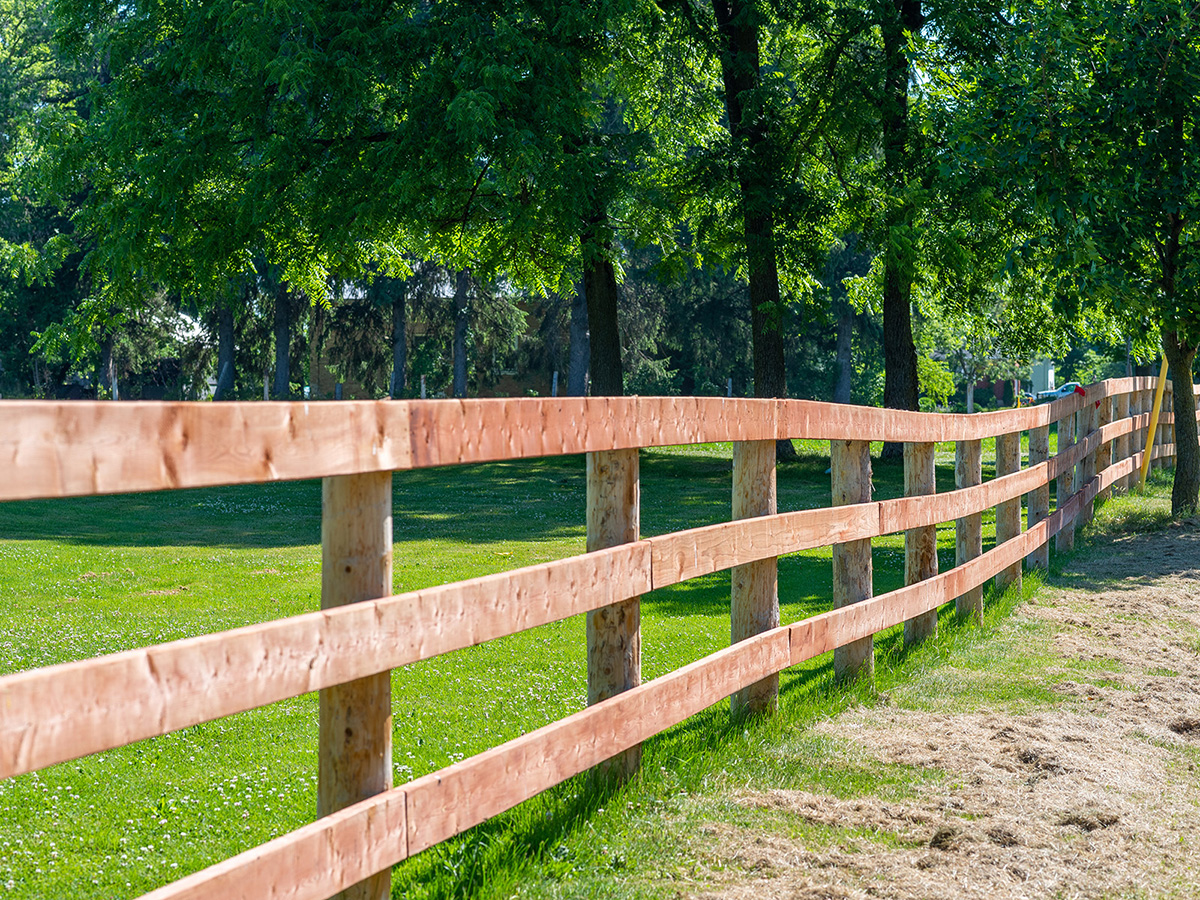 Wood Board Fencing - In-Line Fence