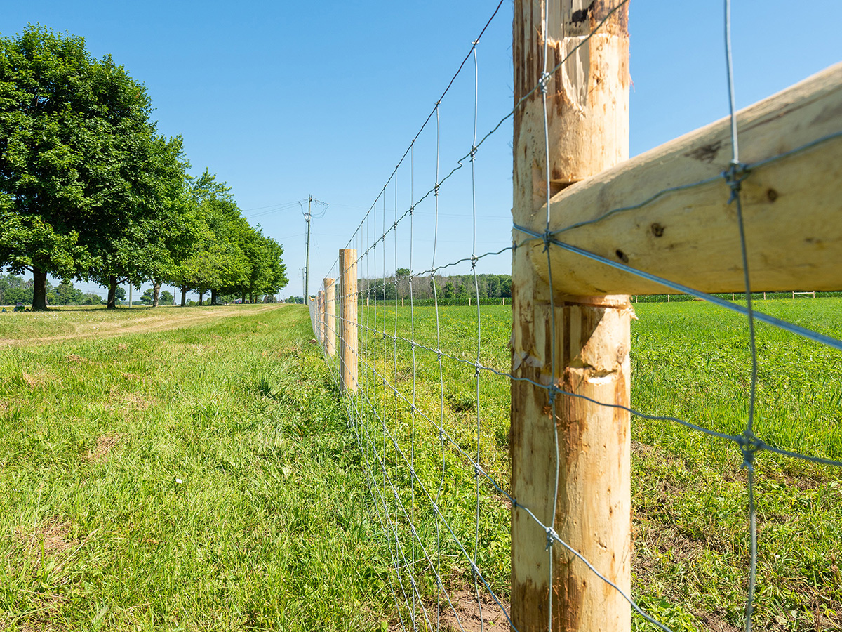 Woven Wire Fence - In-Line Fence - 02