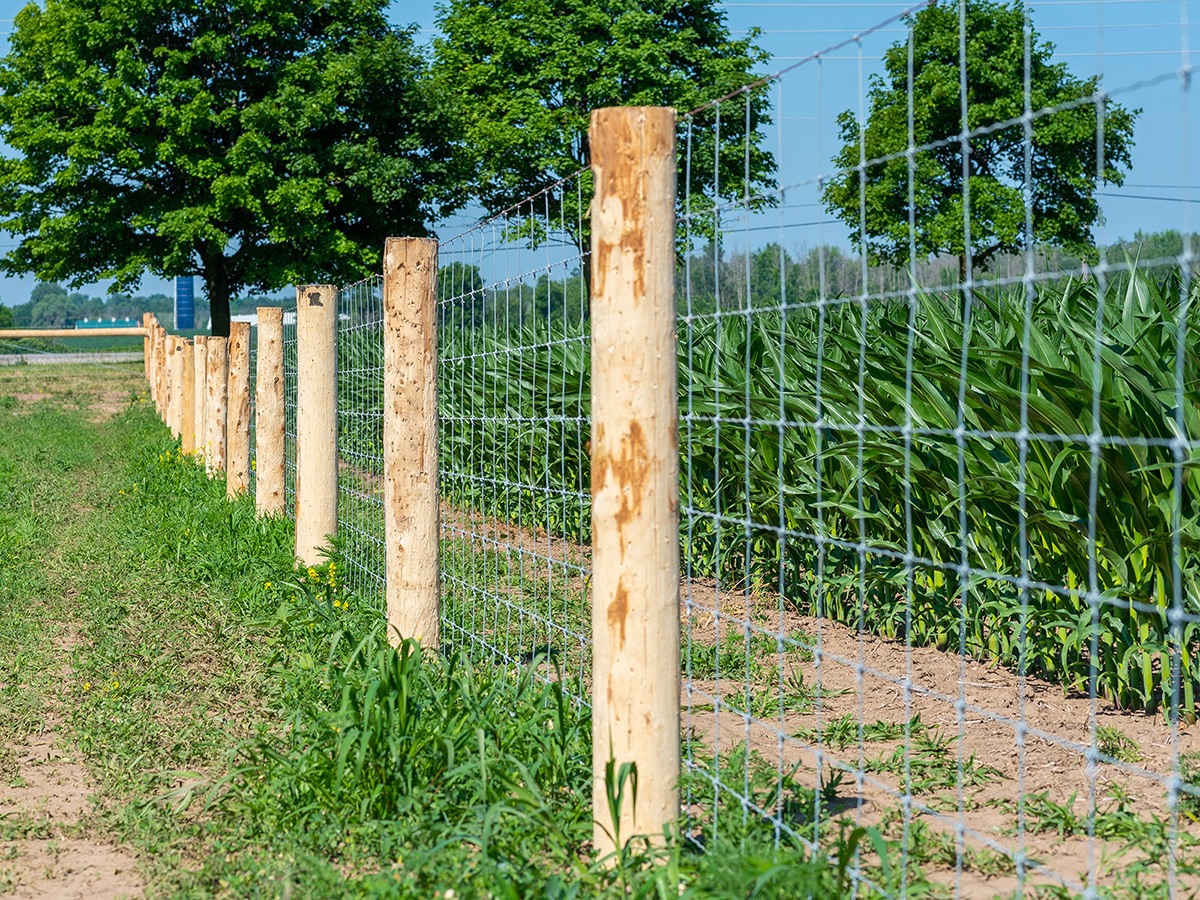 Woven Wire Fence - In-Line Fence - 03